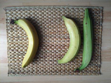 Különbség banán és főzőbanán között…
